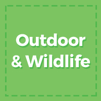 Outdoor & Wildlife
