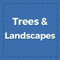 Trees & Landscape